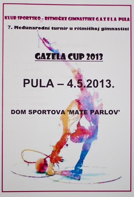 gazela cup 2013