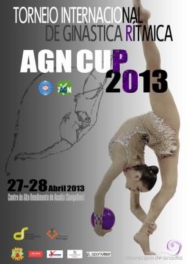 agn-cup-2013